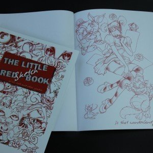 The Little Red Shetch Book